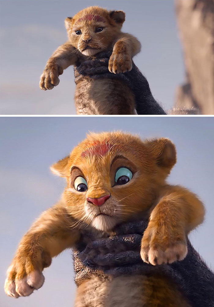 5d38074a745d1-lion-king-live-action-fan-remake-nikolay-mochkin-5d36c09f83313__700